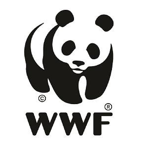 Panda_Box_Logo_CMYK_300dpi web