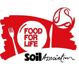 SAFFL_Logo_CMYK web
